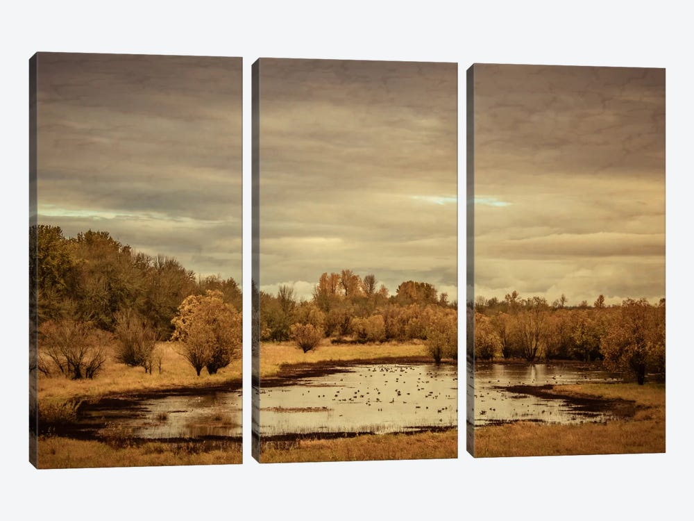Late Autumn Pond by Don Schwartz 3-piece Canvas Print