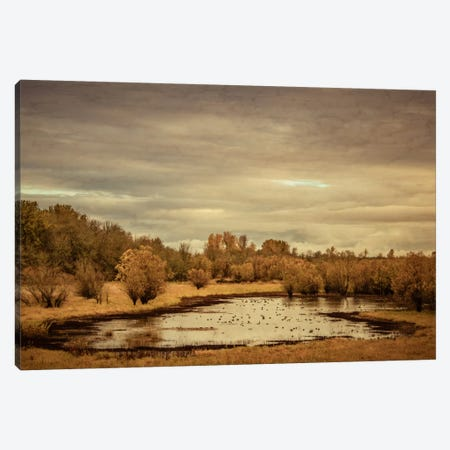Late Autumn Pond Canvas Print #DSC48} by Don Schwartz Art Print