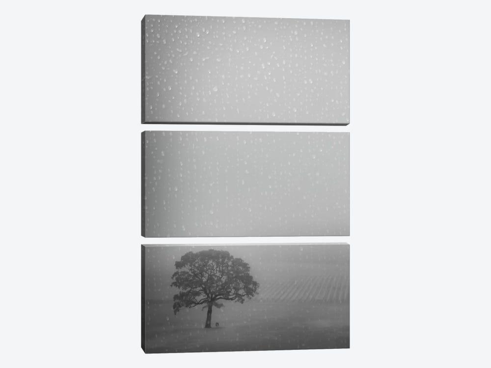 Lone Oak In The Rain by Don Schwartz 3-piece Canvas Art