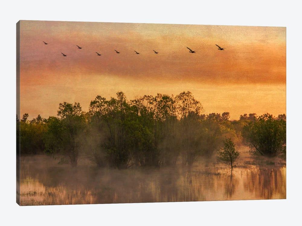 Mist Rising by Don Schwartz 1-piece Canvas Art