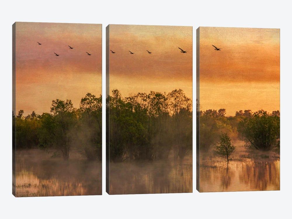 Mist Rising by Don Schwartz 3-piece Canvas Art