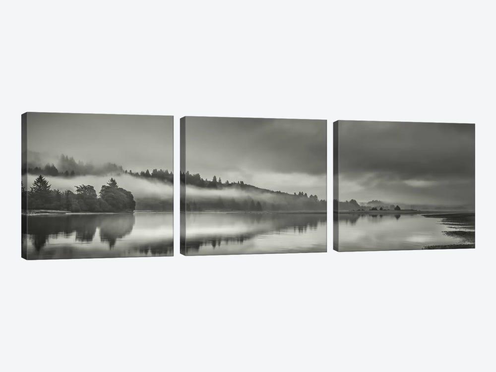 Misty Enchantment II by Don Schwartz 3-piece Canvas Art