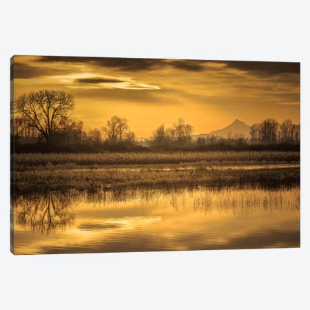 Morning Unfolds Canvas Print #DSC59} by Don Schwartz Canvas Wall Art