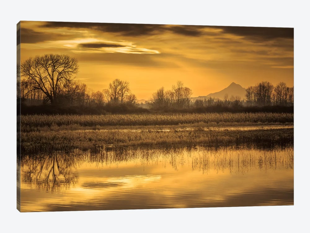 Morning Unfolds by Don Schwartz 1-piece Canvas Print