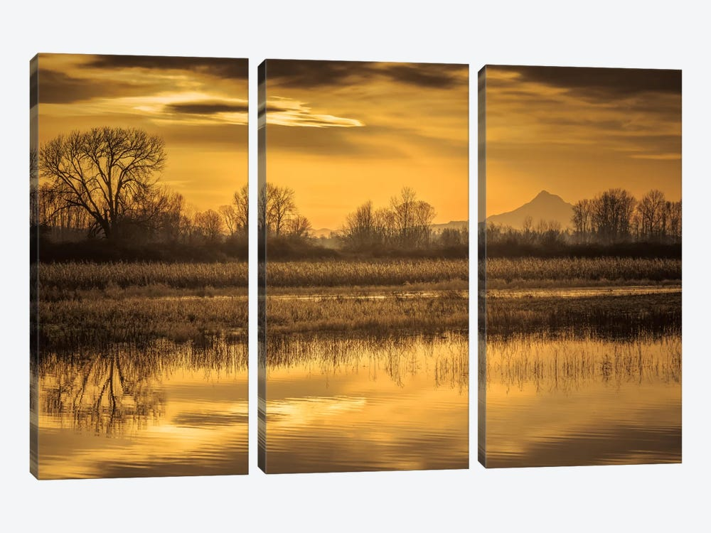 Morning Unfolds by Don Schwartz 3-piece Art Print