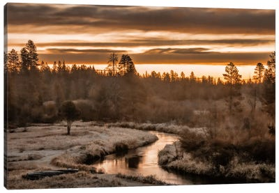 Along The Little Deschutes Canvas Art Print