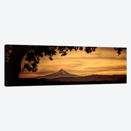 Mt. Hood At Sunset Canvas Print #DSC60} by Don Schwartz Art Print