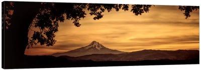 Mt. Hood At Sunset Canvas Art Print