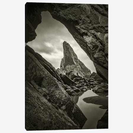 Peeking Through Canvas Print #DSC64} by Don Schwartz Canvas Wall Art