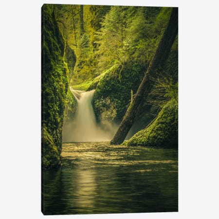 Punchbowl Falls Canvas Print #DSC65} by Don Schwartz Canvas Artwork