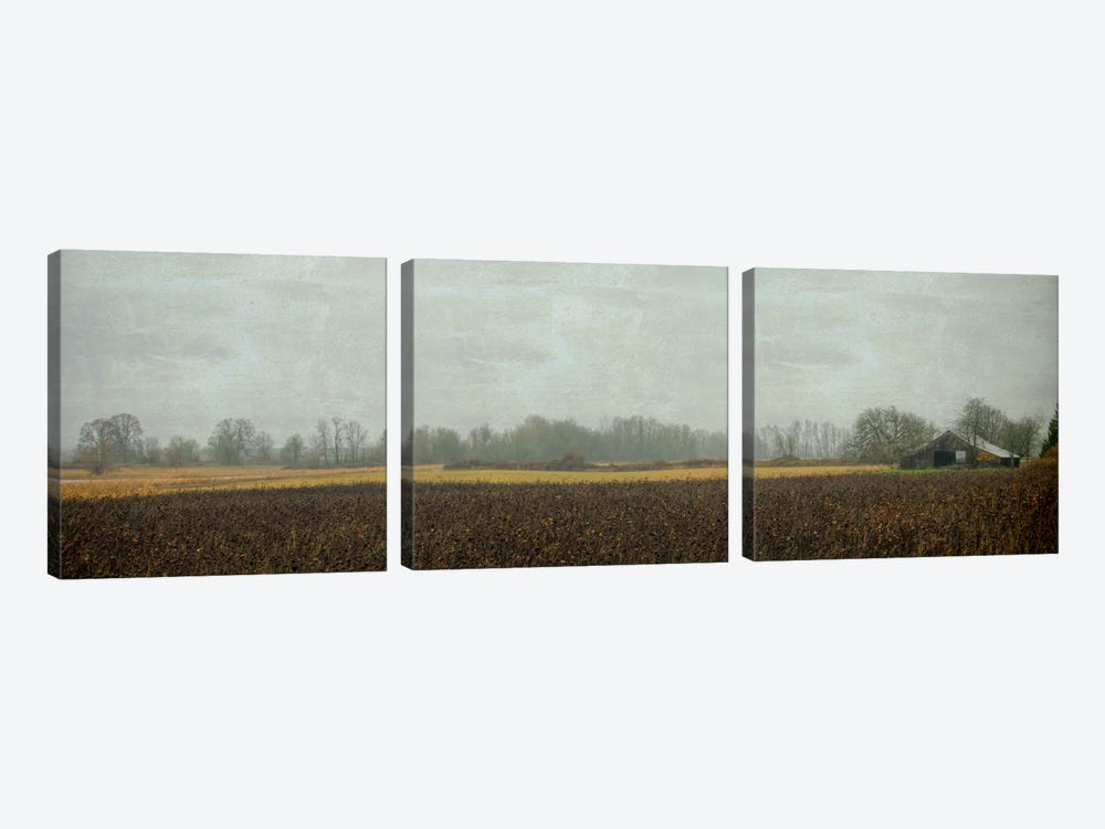 Rustic Barn On A Rainy Day by Don Schwartz 3-piece Canvas Art
