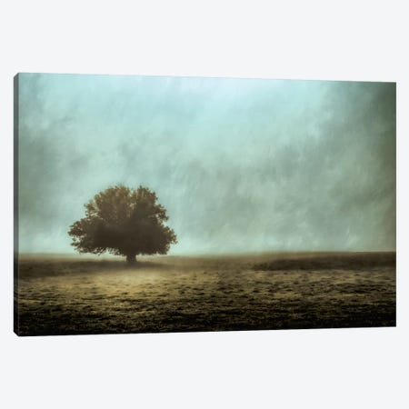 Silent And Still Canvas Print #DSC73} by Don Schwartz Canvas Artwork
