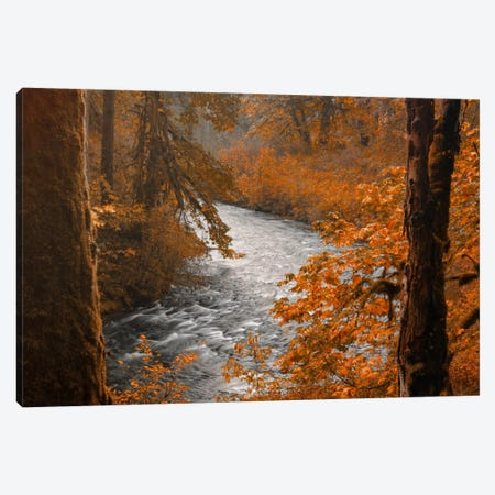 Silver Creek Canvas Print #DSC75} by Don Schwartz Art Print