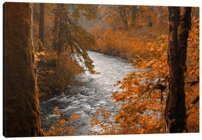 Silver Creek Canvas Art Print