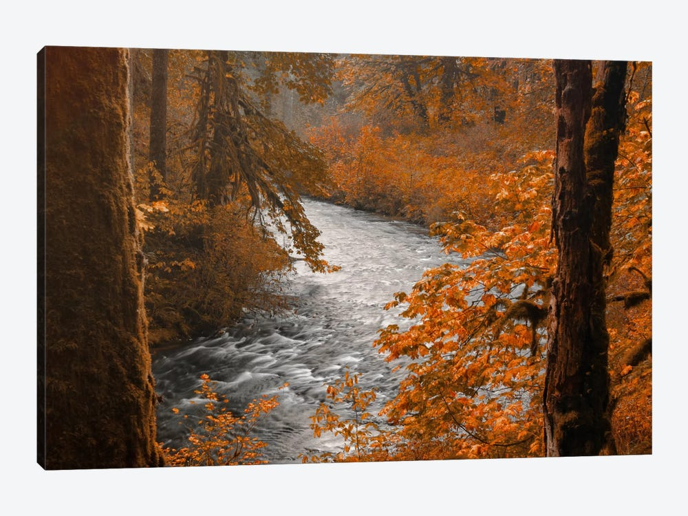 Silver Creek by Don Schwartz 1-piece Canvas Print