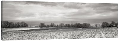 Snow-Dusted Field Canvas Art Print
