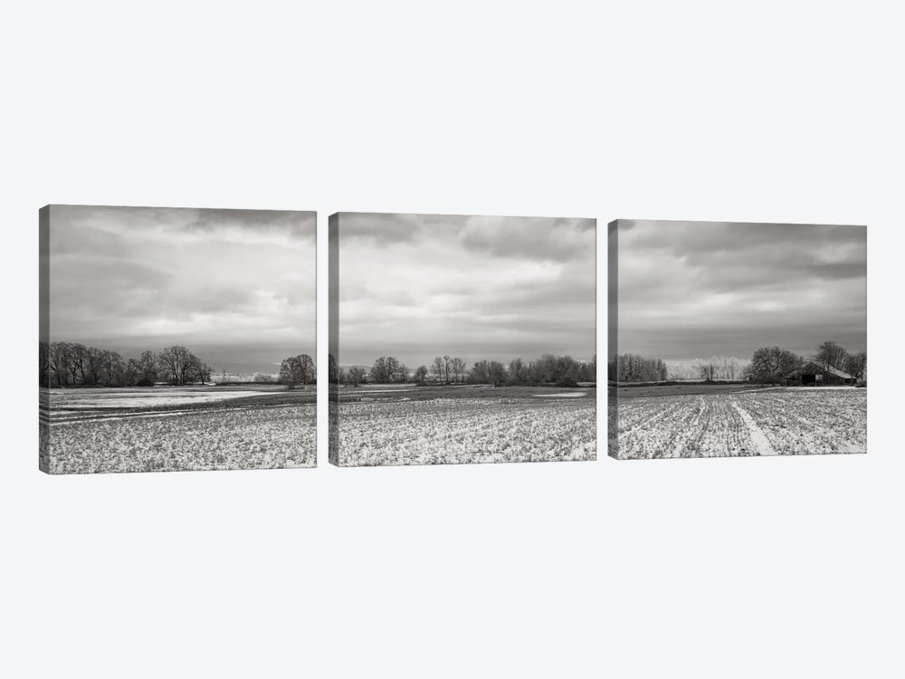 Snow-Dusted Field by Don Schwartz 3-piece Art Print