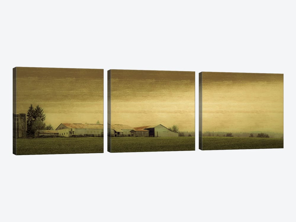 Antiquated Barn by Don Schwartz 3-piece Canvas Artwork