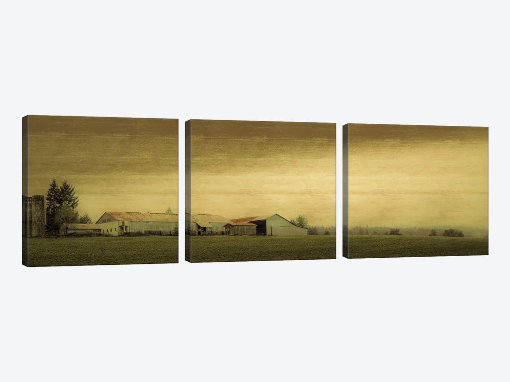 Antiquated Barn by Don Schwartz 3-piece Canvas Artwork