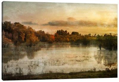Spring Wetlands Canvas Print #DSC83