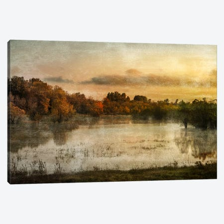 Spring Wetlands Canvas Print #DSC83} by Don Schwartz Art Print