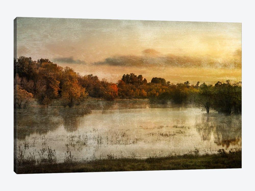 Spring Wetlands by Don Schwartz 1-piece Canvas Wall Art