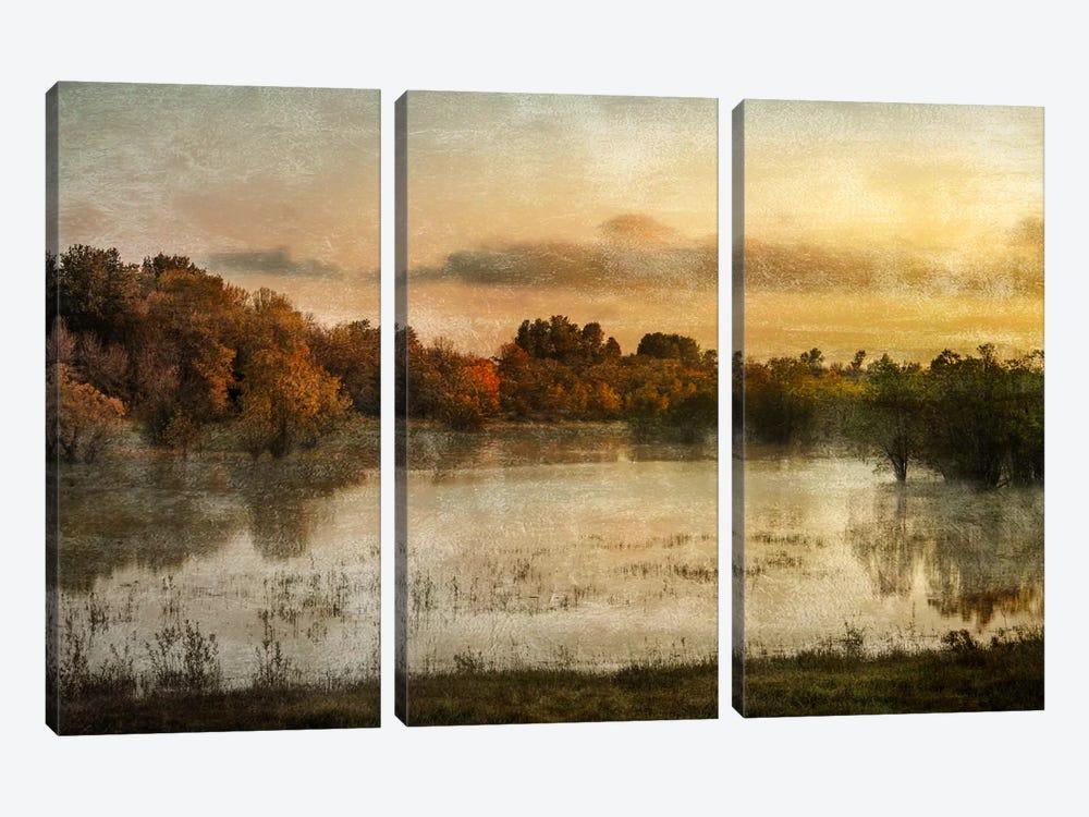 Spring Wetlands by Don Schwartz 3-piece Canvas Artwork