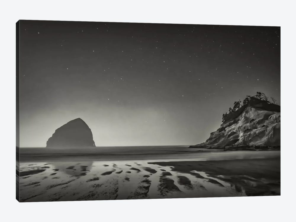 Stars Emerging In B&W by Don Schwartz 1-piece Canvas Art