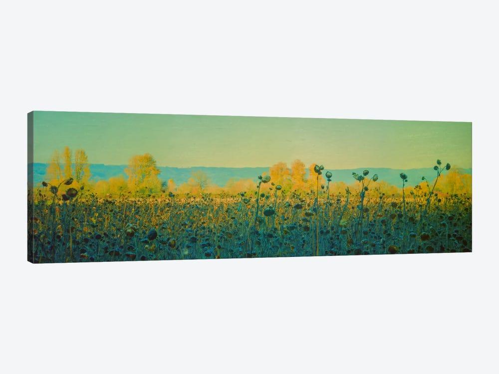 Sunflowers In Autumn by Don Schwartz 1-piece Art Print