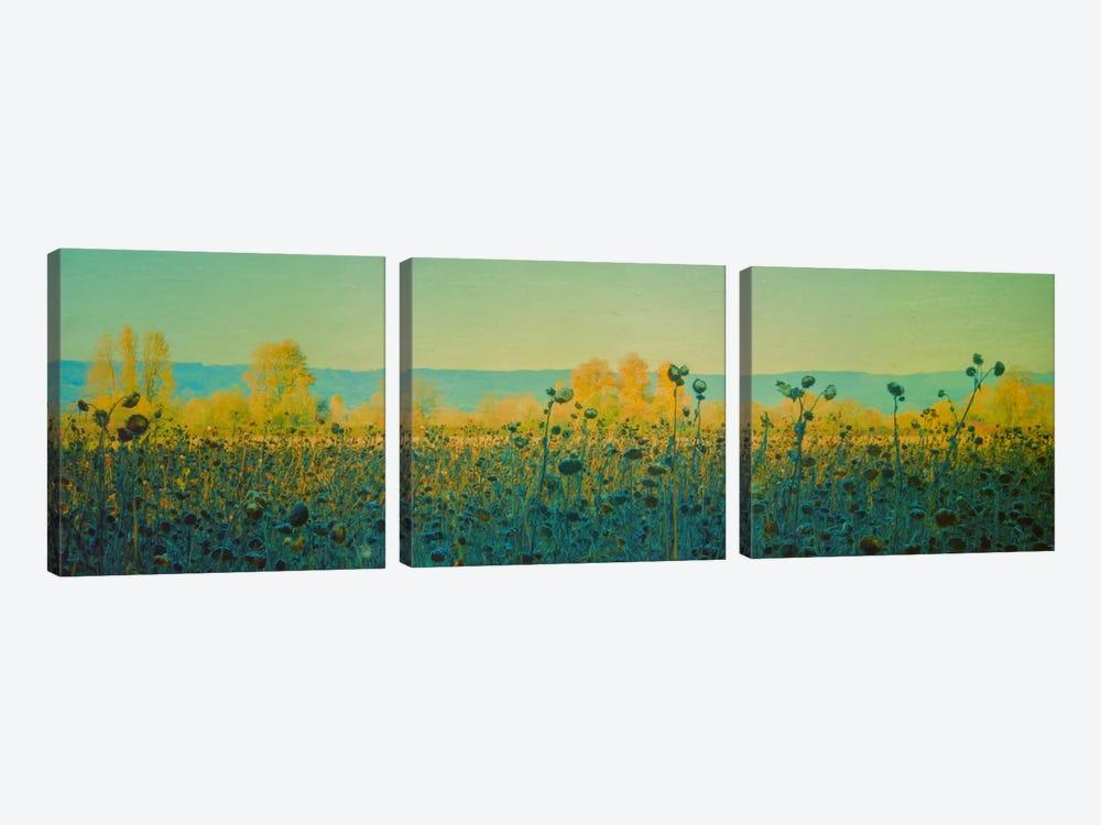 Sunflowers In Autumn by Don Schwartz 3-piece Canvas Art Print