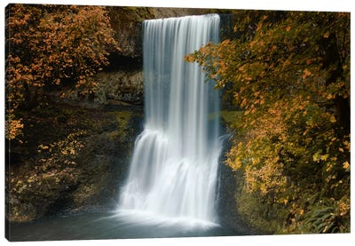 Autumn Cascade Canvas Art Print