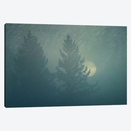 Sunrise In The Fog Canvas Print #DSC90} by Don Schwartz Canvas Wall Art