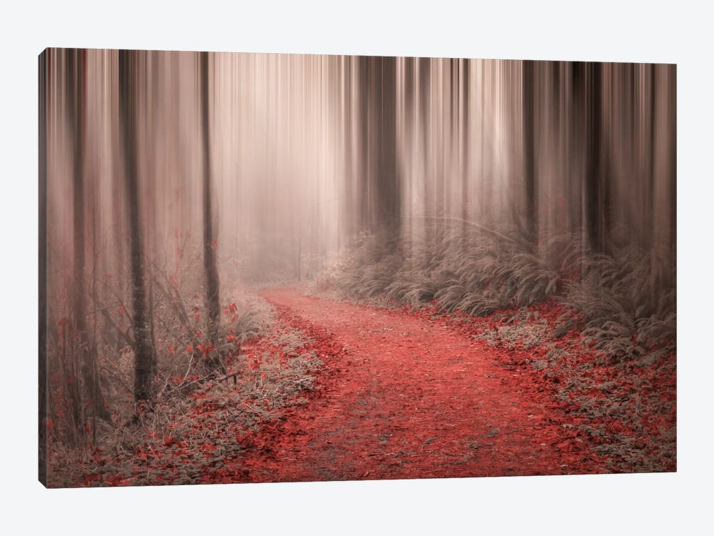Through The Woods III 1-piece Canvas Print