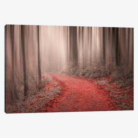Through The Woods III Canvas Print #DSC93} by Don Schwartz Canvas Artwork