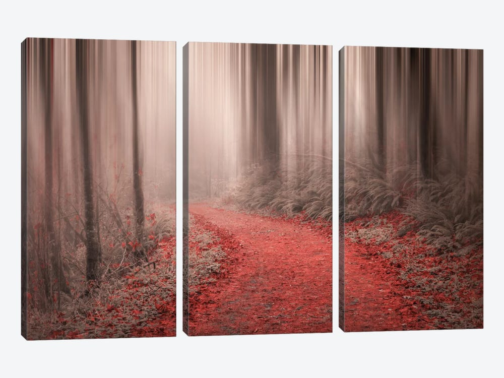 Through The Woods III 3-piece Canvas Art Print