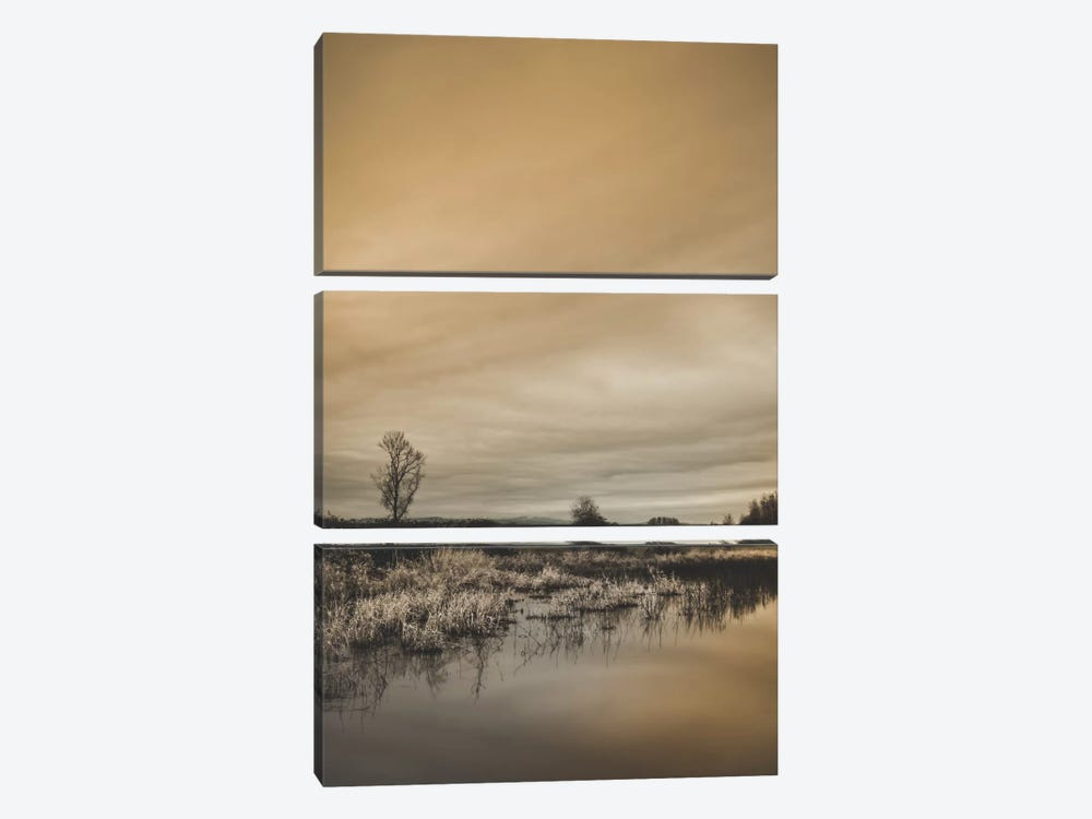 Tree By The Pond by Don Schwartz 3-piece Canvas Artwork