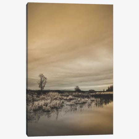 Tree By The Pond Canvas Print #DSC96} by Don Schwartz Canvas Print