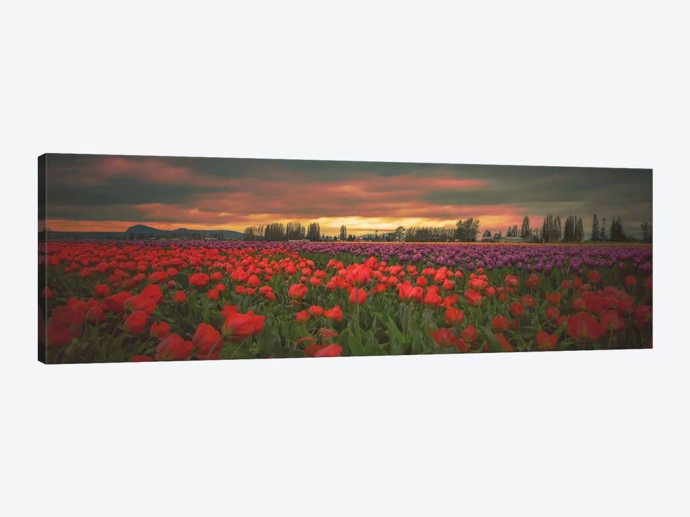 Tulips Aglow by Don Schwartz 1-piece Canvas Art Print