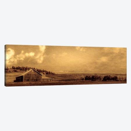 Vineyard Barn Canvas Print #DSC99} by Don Schwartz Canvas Artwork