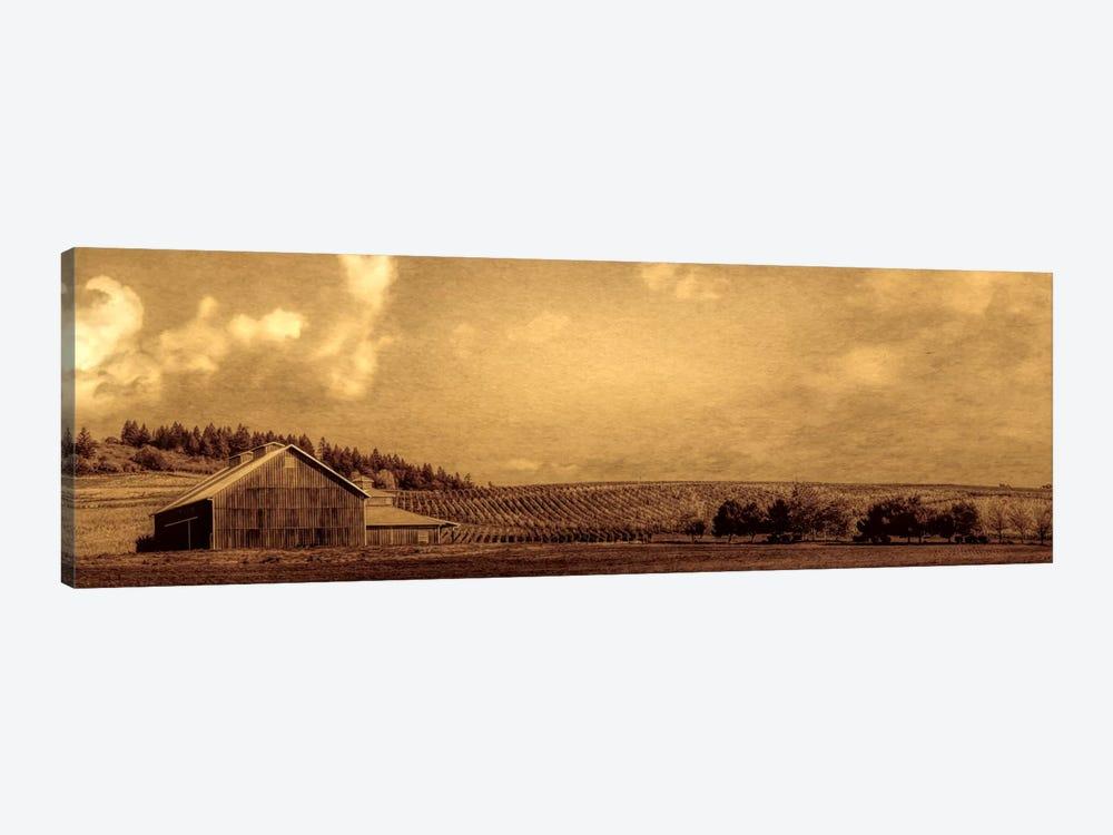 Vineyard Barn by Don Schwartz 1-piece Canvas Art Print