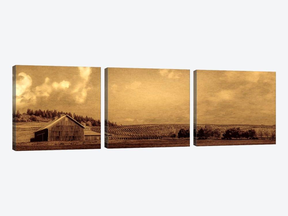 Vineyard Barn by Don Schwartz 3-piece Canvas Art Print