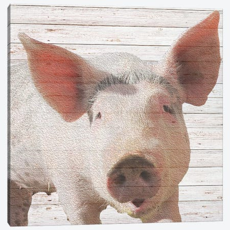 Wilbur Canvas Print #DSG10} by Daniela Santiago Canvas Art
