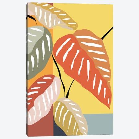 Tropical Plant I Canvas Print #DSG95} by Daniela Santiago Canvas Print