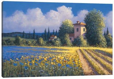 Summer Fields II Canvas Art Print