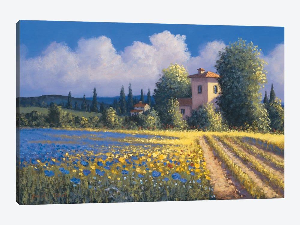 Summer Fields II by David Short 1-piece Canvas Artwork