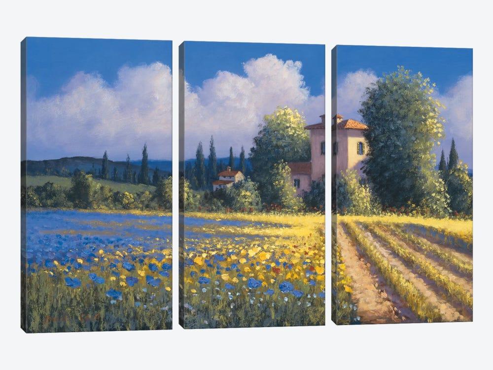 Summer Fields II by David Short 3-piece Canvas Art