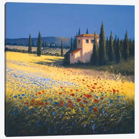 Summer Villa Canvas Print #DSH14} by David Short Canvas Artwork