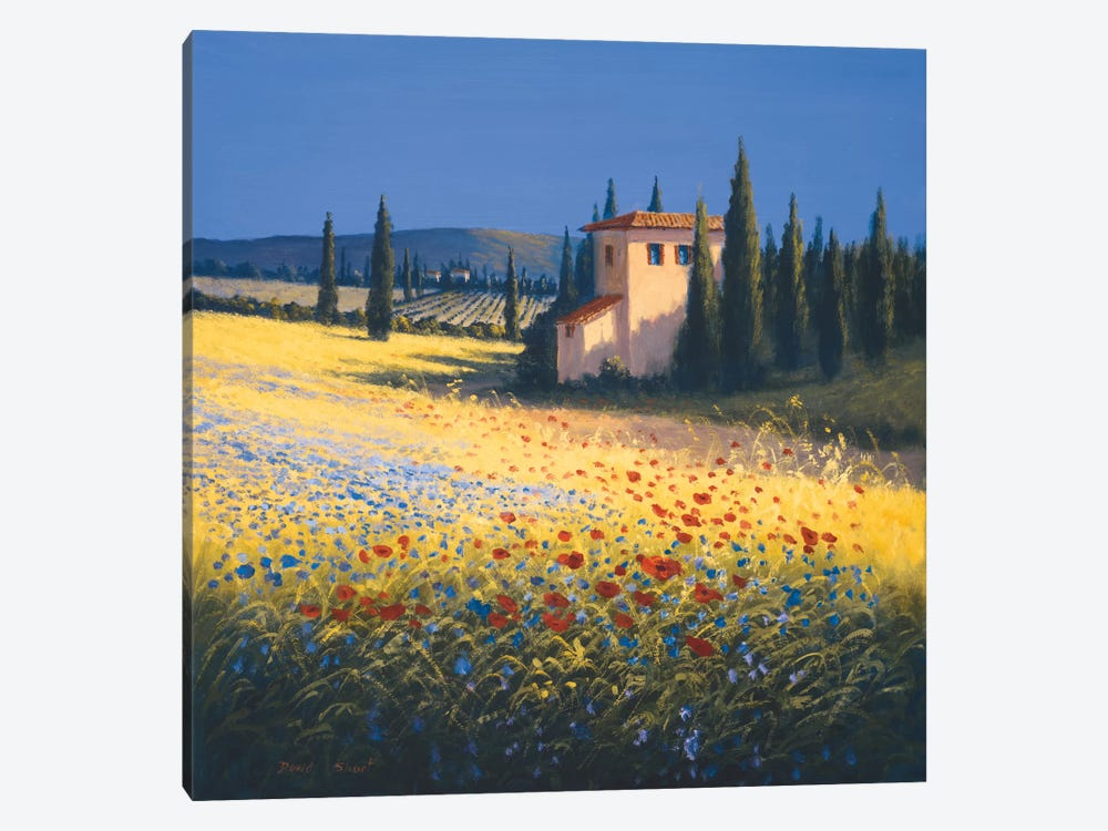 Summer Villa by David Short 1-piece Canvas Print