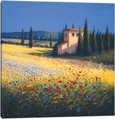 Summer Villa Canvas Art Print