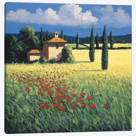 Summer's Brilliance Canvas Print #DSH15} by David Short Canvas Wall Art
